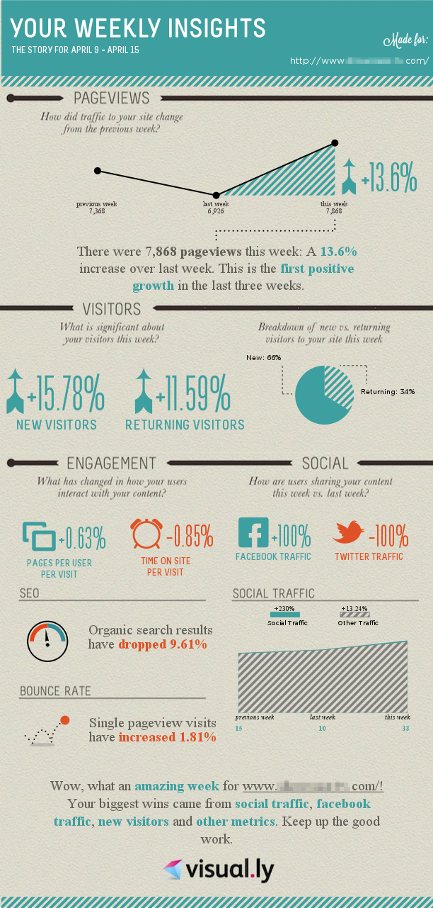 Goggle Analytics meet Infographics